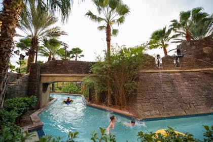 Pool |  | Wyndham Grand Orlando Resort Bonnet Creek