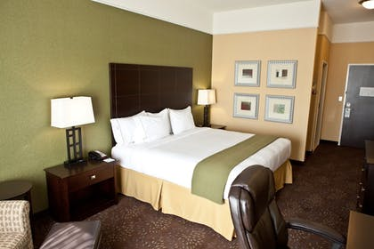 Guestroom | Holiday Inn Express Hotel & Suites Lansing-Dimondale