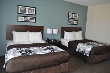 Guestroom View | Sleep Inn & Suites Austin North I-35