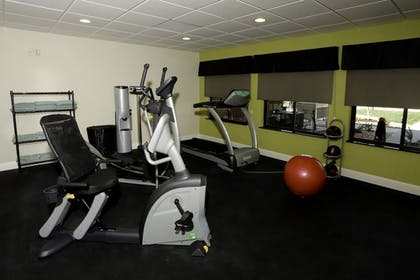 Fitness Facility | Holiday Inn Express Hotel & Suites Marion Northeast