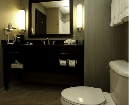 Bathroom | Holiday Inn Express Hotel & Suites Marion Northeast