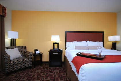 Room | Holiday Inn Express & Suites Gonzales