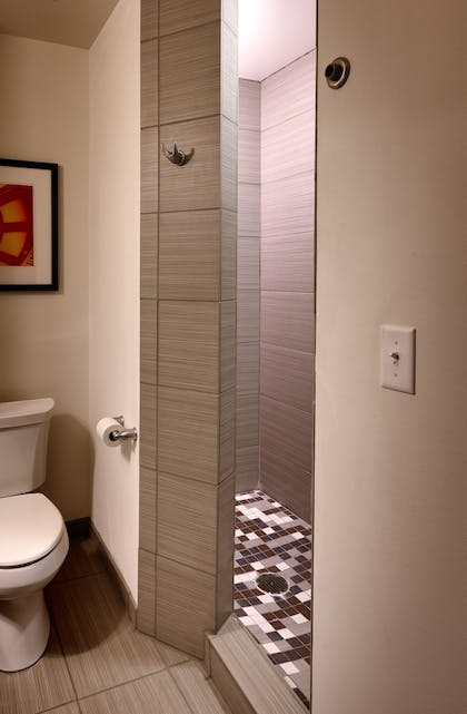 Bathroom | Holiday Inn Express and Suites Overland Park