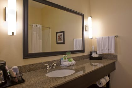 Bathroom | Holiday Inn Express Hotel & Suites Prattville South