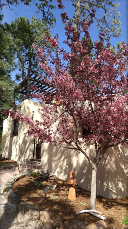 Property Grounds | Adobe Inn at Cascade