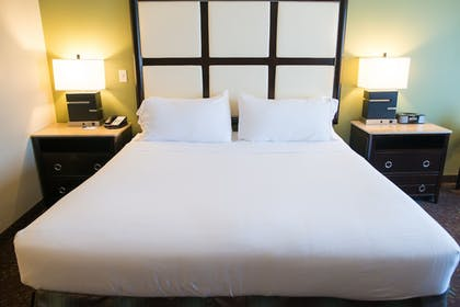 Guestroom | Holiday Inn Express Hotel & Suites Albert Lea - I-35