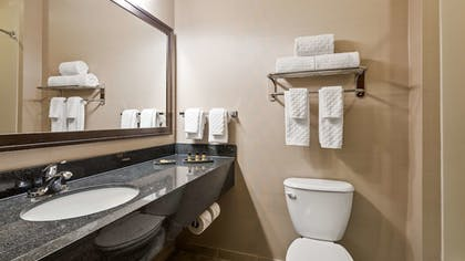 Bathroom | Best Western Plus Green Mill Village Hotel & Suites