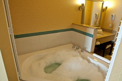 Bathroom | Holiday Inn Express & Suites Detroit North - Troy