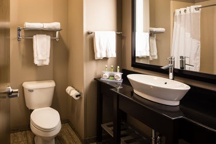 Bathroom | Holiday Inn Express Hotel & Suites El Reno