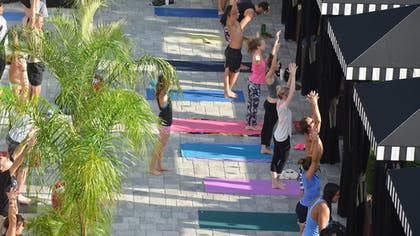 Yoga | Hollander Boutique Hotel