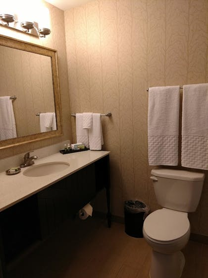 Bathroom | Best Western Plus Dayton Hotel & Suites