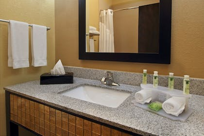 In-Room Amenity | Holiday Inn Express & Suites Houston East - Baytown