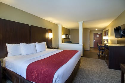 Guestroom   Comfort Suites and Conference Center
