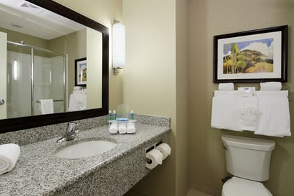 Bathroom | Holiday Inn Express & Suites Colorado Springs First & Main