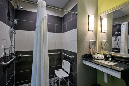 Bathroom | Holiday Inn Express Hotel & Suites, Carlisle-Harrisburg Area