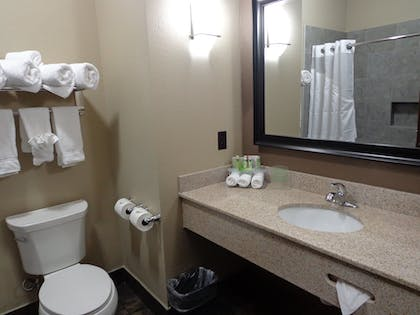 Bathroom   Holiday Inn Express Hotel & Suites Lubbock South