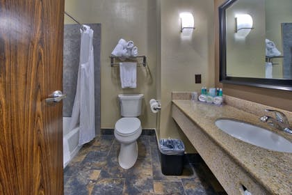 Bathroom | Holiday Inn Express Hotel & Suites Lubbock South