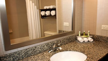 Bathroom | Holiday Inn Express & Suites Wichita Northeast