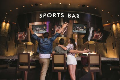 Sports Bar | Aria Sky Suites