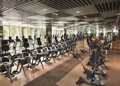 Fitness Facility | Aria Sky Suites