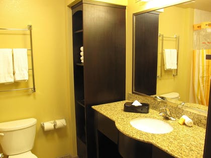 Bathroom | Holiday Inn Express Hotel & Suites Denver East-Peoria Street