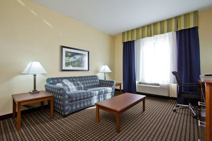 Guestroom | Holiday Inn Express Hotel & Suites Denver East-Peoria Street