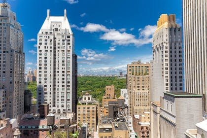 View from Room | Viceroy New York