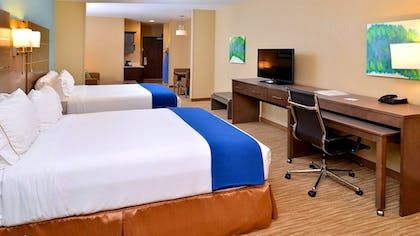 Guestroom | Holiday Inn Express Hotel & Suites Schulenburg