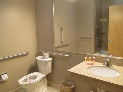 Bathroom | Red Carpet Inn And Suites Monmouth Jtc