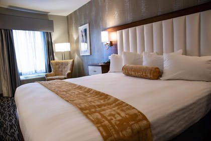 Guestroom | Best Western on the Avenue