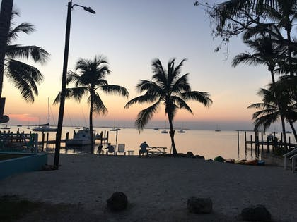 View from Hotel | The Pelican Key Largo Cottages