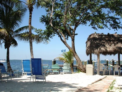Beach | The Pelican Key Largo Cottages