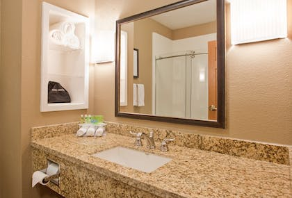 Bathroom | Holiday Inn Express Hotel & Suites St. Joseph