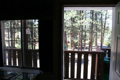 View from Room   Honey Bear Lodge & Cabins