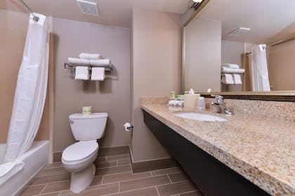 Bathroom | Holiday Inn Express Hotel & Suites Indio