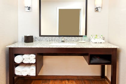 Bathroom | Holiday Inn Express Hotel & Suites Huntsville West - Research Pk