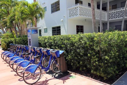 Bicycling   Hôtel Gaythering - Gay Hotel - All Adults Welcome