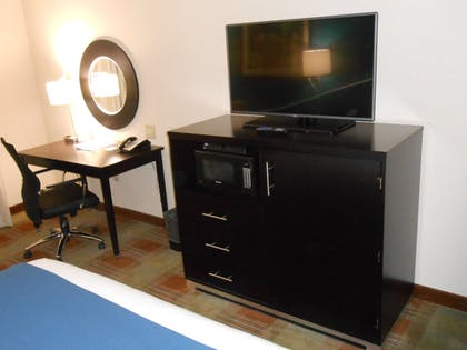 In-Room Amenity | Holiday Inn Express Hotel & Suites Houston NW-Brookhollow
