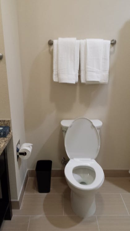 Bathroom | Holiday Inn Express Hotel & Suites Houston NW-Brookhollow