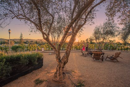 Property Grounds | Allegretto Vineyard Resort Paso Robles
