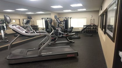Fitness Facility | Holiday Inn Express Hotel & Suites Cambridge
