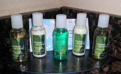 Bathroom Amenities | Rock Island Inn & Suites