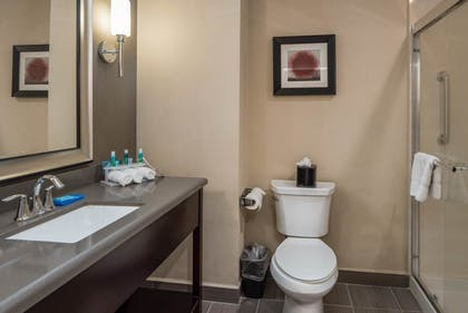 Bathroom | Holiday Inn Express & Suites Lantana