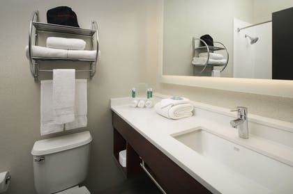Bathroom | Holiday Inn Express & Suites Charlottesville - Ruckersville