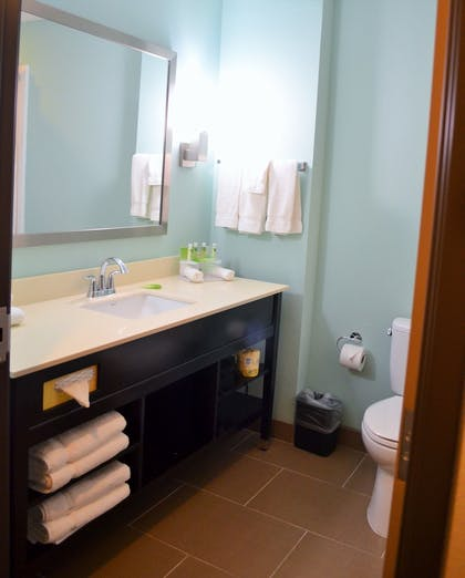 Bathroom | Holiday Inn Express & Suites Austin South