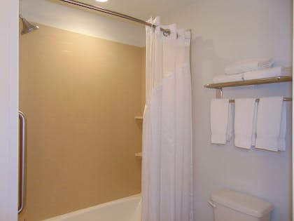 Bathroom | Holiday Inn Express & Suites Springville-South Provo Area