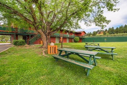 BBQ/Picnic Area | Discovery Lodge