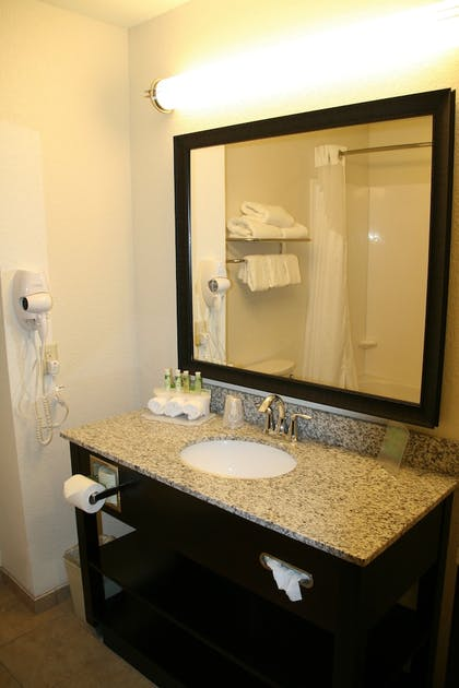 Bathroom | Holiday Inn Express & Suites Nevada