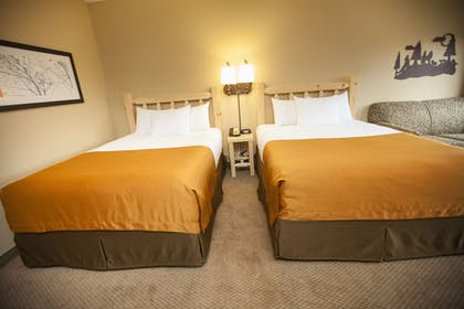 Guestroom   Great Wolf Lodge Boston / Fitchburg, MA