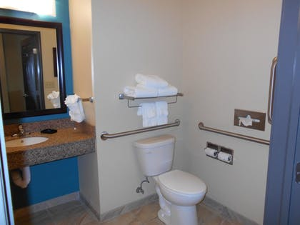 Bathroom | Best Western Plus Patterson Park Inn